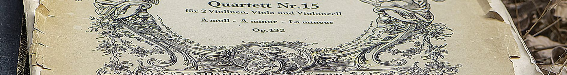 Workshop Beethoven (vol)