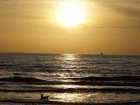 Blog: Zon...licht